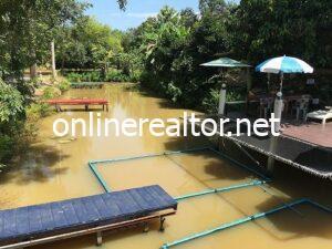 ้homestay in thailand